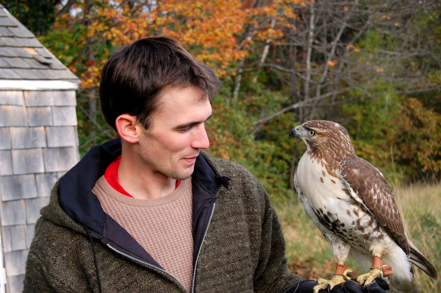 Henry and a red tail hawk, photo credit: Madeleine K. Bruce