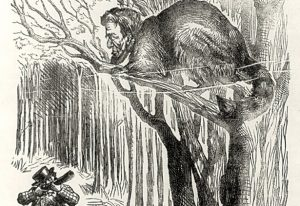 Lincoln as a frightened raccoon, Punch, January 11, 1862, Library of Congress