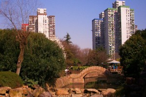 Another view of park at Shuicheng Road
